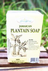 Plantain Soap
